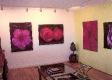 Dragon Gallery - The Hamptons NY - USA