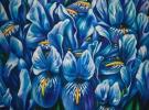 Alegria (100 x 120cm)