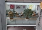 Frühling - Sana Klinik Bethesda, Stuttgart - Germany