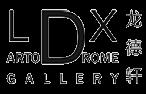 LDX_Art_Logo
